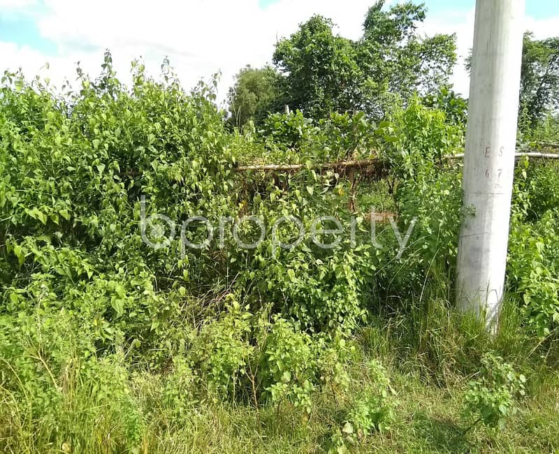 7.5 Katha Plot Is Available For Sale In Purbachal