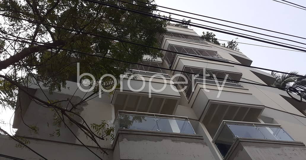 See This Apartment Up For Rent In Dhanmondi Near Lalmatia C Block Jam-e-masjid