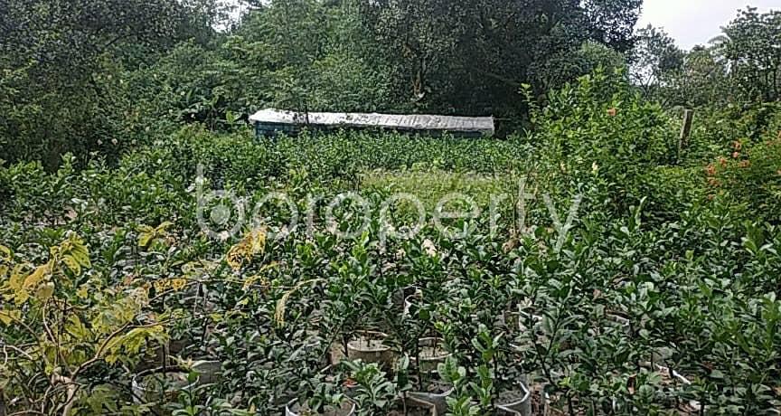 View This 9 Katha Plot For Sale At Ashulia