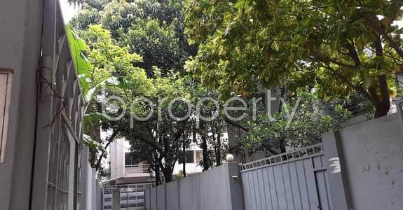 ভাড়ার জন্য BAYUT_ONLYএর অ্যাপার্টমেন্ট - ধানমন্ডি, ঢাকা - 1250 Sq Ft Apartment Is Available For Rent In Dhanmondi