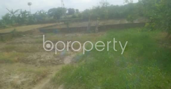 Plot for Sale in Mohammadpur, Dhaka - Grab This 3 Katha Plot For Sale In Mohammadpur