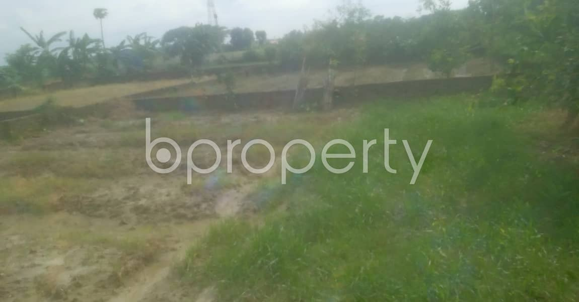 Grab This 3 Katha Plot For Sale In Mohammadpur