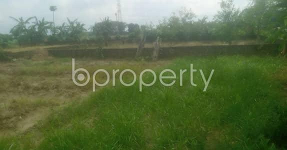 Plot for Sale in Mohammadpur, Dhaka - 3 Katha Plot Is For Sale In Mohammadpur