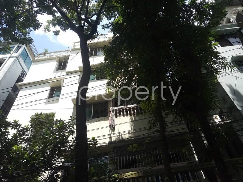 900 Sq Ft Apartment To Rent In Panchlaish