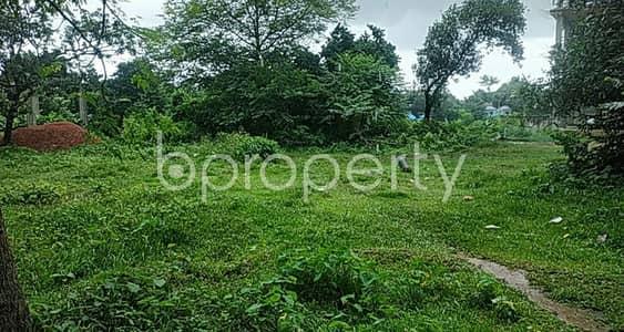 Plot for Rent in Savar, Dhaka - 20 Katha Commercial Plot Ready To Be Lease At Birulia Road, Ashulia