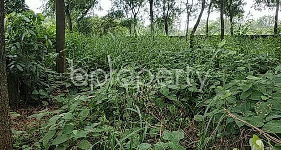 Plot for Sale in Savar, Dhaka - Grab This Nice 10 Katha Residential Plot Which Is Available For Sale In Ashulia, Savar
