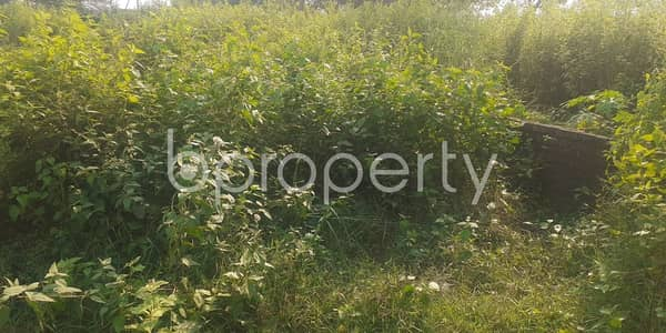 Plot for Sale in Bashundhara R-A, Dhaka - A Perfect Residential 5 Katha Plot Is Available For Sale At Block P, Bashundhara R-a
