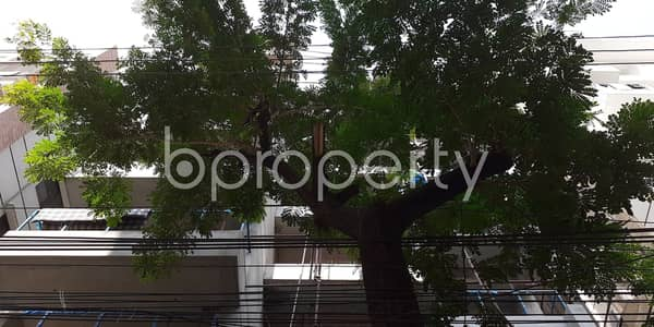 Beautiful Abode Better Than This 1700 Sq. Ft. Flat In Bashundhara R-a For Sale
