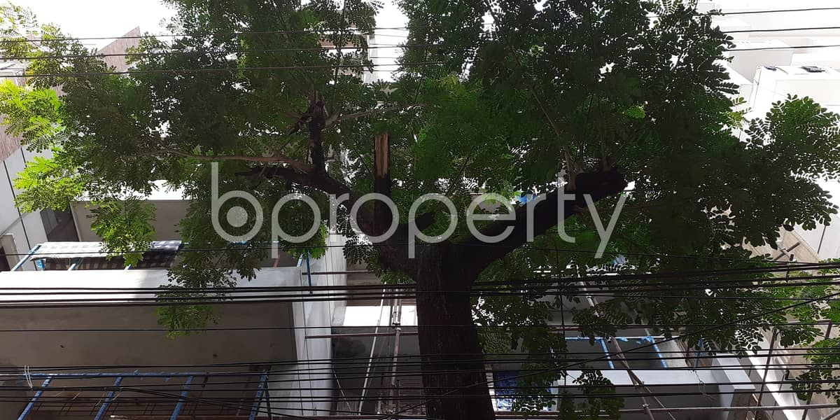 Expand Your Ability - Glorious Apartment For Sale In Bashundhara R-A