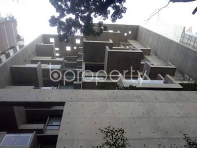 Near Baridhara Jame Masjid, 4500 Sq. Ft Flat For Rent In Baridhara
