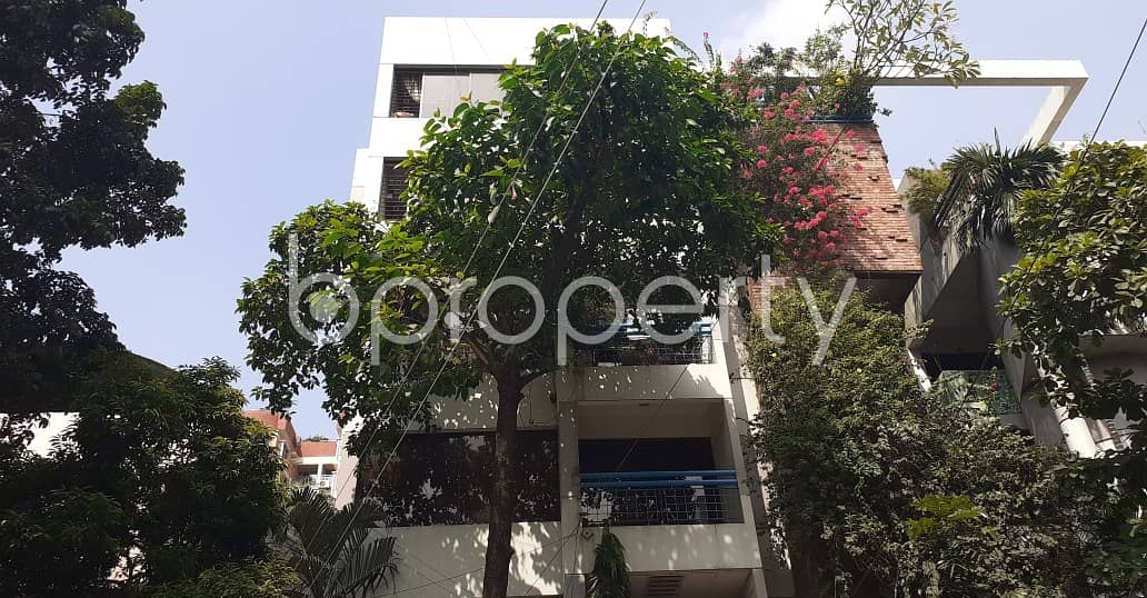 Remarkable Flat Is Up For Rent In Dhanmondi Nearby Dr. Malika University College
