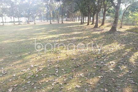 Plot for Sale in Mawna - Sreepur Road, Gazipur - 216000 SQ FT Plot is now for sale in Gazipur