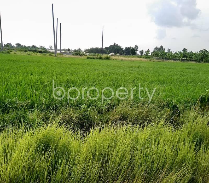 Grab This 3 Katha Commercial Plot Is Available For Sale In Purbachal